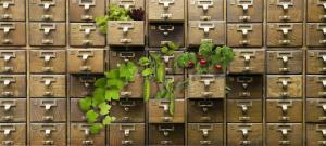 A seed library